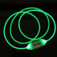 Pet Ρυθμιζόμενο Πλαστικό Κολάρο Με Φως Led Πράσινο