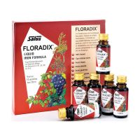 Power Health Floradix Liquid Iron Formula 10x20ml
