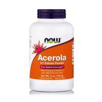 Now Foods Acerola Extract Powder Συμπλήρωμα Διατροφής για την Ενίσχυση του Ανοσοποιητικού Συστήματος 170gr