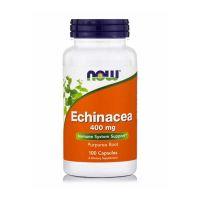 Now Foods Echinacea 400mg Συμπλήρωμα Διατροφής για την Ενίσχυση του Ανοσοποιητικού Συστήματος 100 κάψουλες