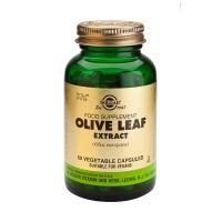 Solgar Olive Leaf Extract (Olea europaea) Ενισχυμένα Φυτικά Εκχυλίσματα 60 Veg. Caps